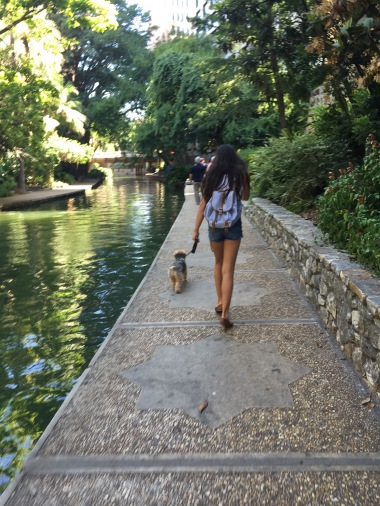 Our pup with my daughter along the River Walk