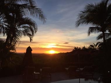 This sunset!