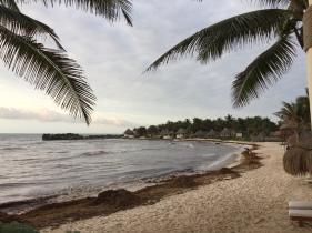 Beach @ El Pez