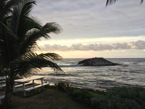 Views at El Pez