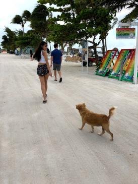 Exploring Main Street