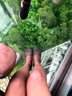 Glass bottom cable car