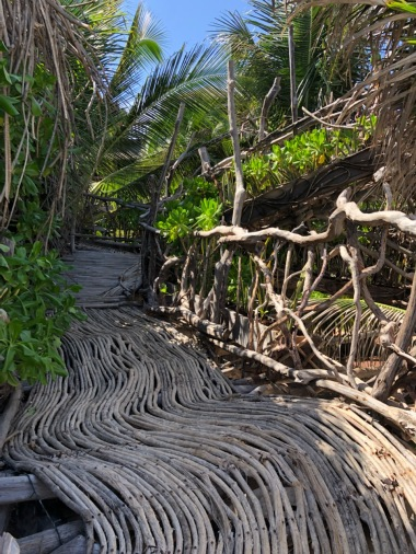 Pathway to the nest areas at Kanan